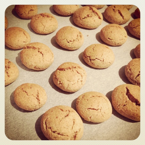 Healthy Almond Meal Cookies