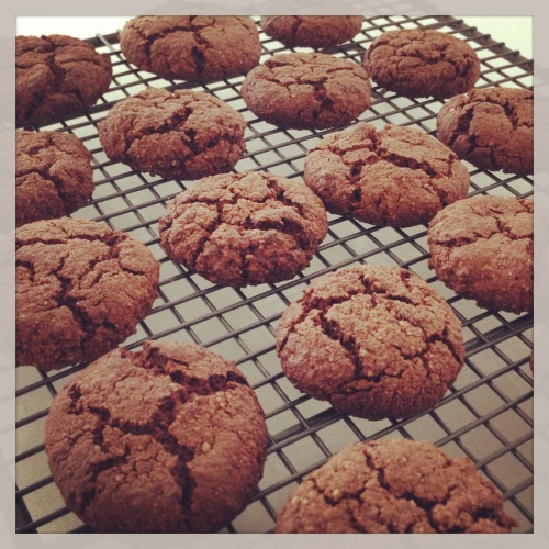 Paleo Chocolate Crinkle Cookies