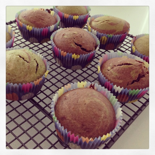 Vegan Matcha and Chocolate Muffins