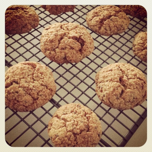 Coconut and Chia Seed Paleo Cookie